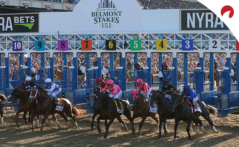 betting odds belmont stakes 2021picks