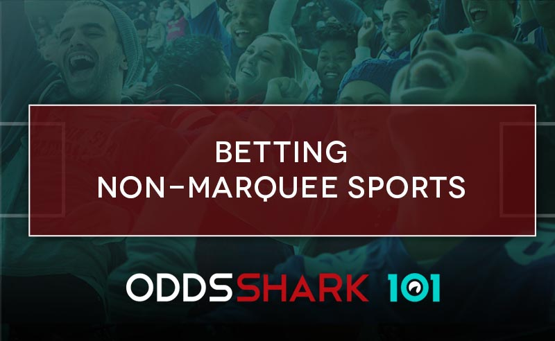 Non sports betting odds new jersey online sports betting