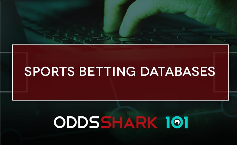 Best sports betting stats site alice bettington