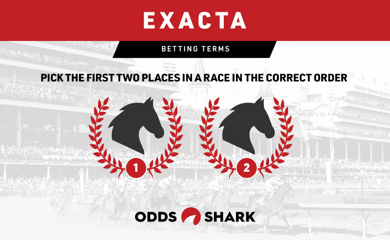 Betting exacta boxes what can you bet on
