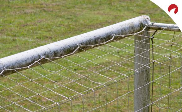 Apuestas al número de goles - Par o Impar
