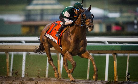 Accelerate Breeders' Cup races Pacific Classic