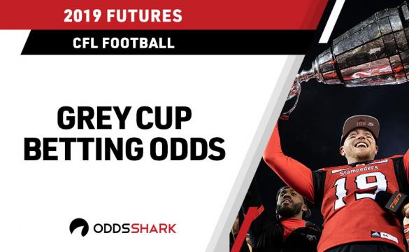 Quarterback Bo Levi Mitchell #19 of the Calgary Stampeders hoists the Grey Cup after defeating the Ottawa Redblacks during the second half of the Grey Cup at Commonwealth Stadium on November 25, 2018 in Edmonton, Alberta, Canada