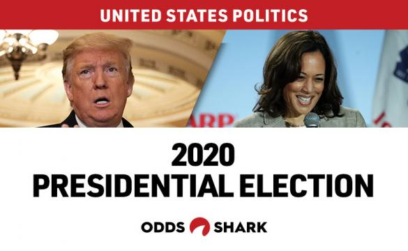 Donald Trump is the betting favorite to win the 2020 Presidential Election