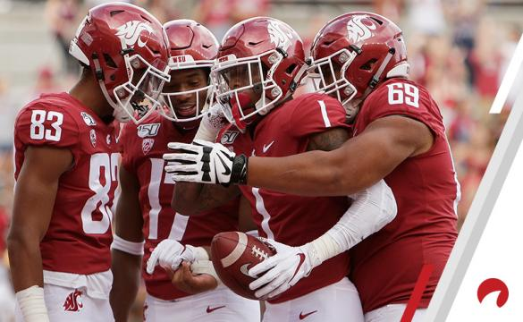 Washington State Cougars Las Vegas Expert Picks: NFL Week 2, NCAAF Week 3, MLB Benjamin Eckstein