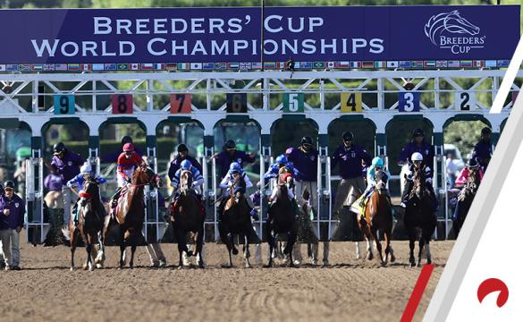 Breeders' Cup Churchill Downs Saturday live long shots Mike Dempsey expert picks
