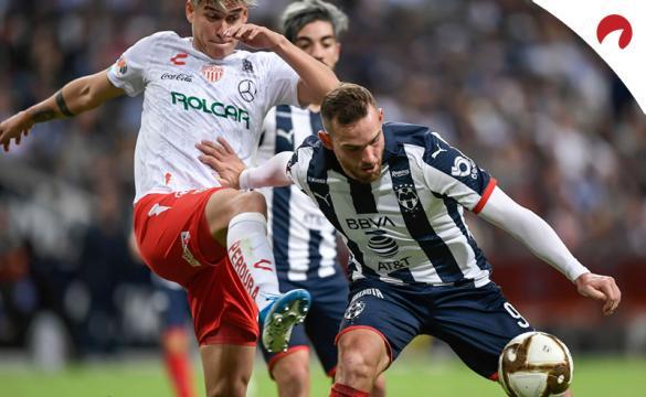 Previa para apostar en el Necaxa Vs Monterrey de la Liga MX - Apertura 2019