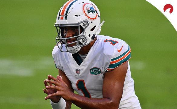 Las Vegas Expert Picks: NCAAF Week 12, NFL Week 11