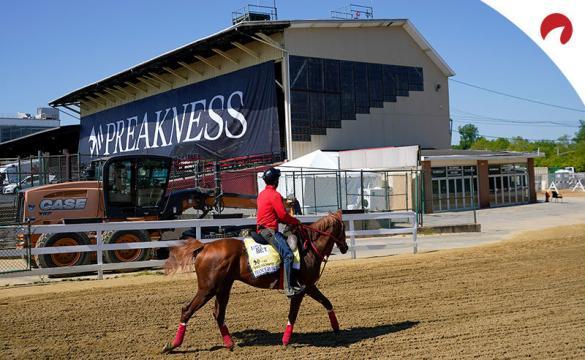 Medina Spirit lidera la tabla de cuotas del Preakness Stakes 2021 en el Pimlico Race Course.