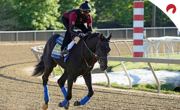 Preakness Stakes Horses Odds