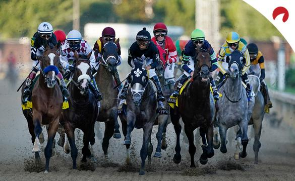 Odds Shark's horse racing expert takes a look at the Belmont Stakes horses and top contenders.