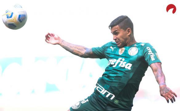 Palmeiras busca vitória incontestável no Brasileirão!