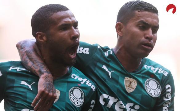 Palmeiras é favorito contra Chapecoense no Brasileirão!