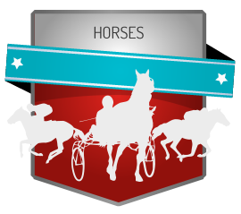 Horse betting websites reviews sports betting on draftkings